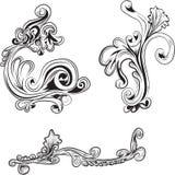 blom- designelement Royaltyfria Bilder
