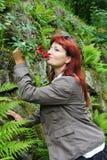 Blom- doft Royaltyfri Fotografi