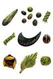 blom- element för ordningssamlingsdesign Fotografering för Bildbyråer