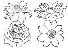 Blom- färgläggningsida vektor illustrationer
