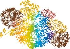 blom- färgrik design Royaltyfri Bild