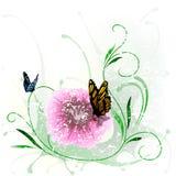 Blom- färgstänk och fjäril Fotografering för Bildbyråer