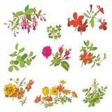Blom- för klottertappning för blomma uppsättning isolerad vit beståndsdel stock illustrationer