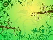 blom- fjäder för bakgrund Royaltyfri Fotografi