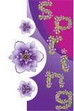 blom- fjäder för bakgrund Stock Illustrationer