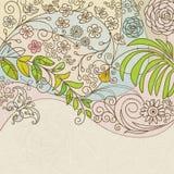blom- fjäder Royaltyfria Bilder