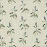 blom- gammal wallpaper Royaltyfria Bilder