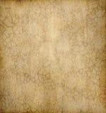 blom- gammalt papper för bakgrund Arkivfoton