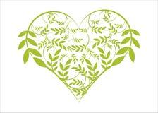 blom- grön hjärta Arkivbild