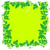 blom- grönt lövrikt för bakgrund Royaltyfri Bild