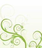 blom- green för bakgrund Arkivbild