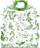 blom- green för stor samling Royaltyfri Fotografi