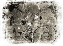 blom- grunge Arkivfoto