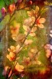 blom- grunge för konstbakgrund Royaltyfri Foto