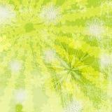 Blom- Grungy bakgrund Royaltyfri Foto