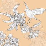 Blom- hälsningkort för tappning med fågeln och Arkivbild