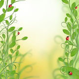 blom- härlig design arkivbilder
