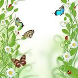 blom- härlig design stock illustrationer