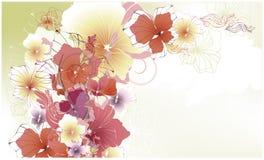 blom- härligt kort Arkivbilder