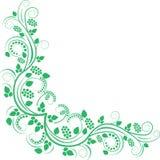 blom- hörn Royaltyfri Bild
