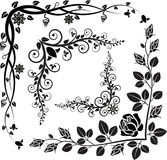 Blom- hörn Royaltyfria Bilder