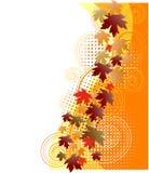 blom- höstbakgrund stock illustrationer