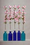 Blom- hedersgåva Royaltyfria Bilder