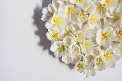 Blom- hjärta för somrar med blommor Royaltyfria Foton