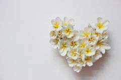 Blom- hjärta för somrar med blommor Arkivfoto