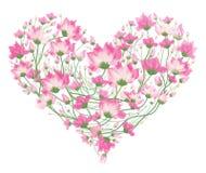 Blom- hjärtaform för vektor Arkivbilder