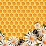 blom- honung för bakgrund royaltyfri illustrationer