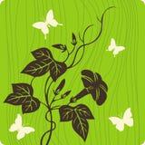 blom- illustration för bakgrund Royaltyfria Bilder