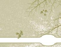 blom- illustrationfjäder för bakgrund Royaltyfri Bild