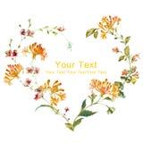 Blom- illustrationsamling för vattenfärg ordnat FN för blommor en form av den perfekta kransen Arkivfoton
