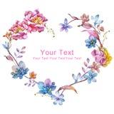 Blom- illustrationsamling för vattenfärg ordnat FN för blommor en form av den perfekta kransen Royaltyfri Bild