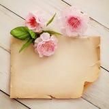 Blom- inrama bakgrund Arkivbild