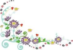 blom- kant Royaltyfria Bilder