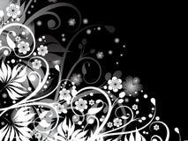 blom- kaos Arkivfoton