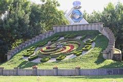 Blom- klocka Timisoara Royaltyfri Bild