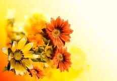 Bakgrund som är blom-, konst, Arkivbild