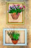 Blom- konst - töm ramar med blom- krukor på väggen Royaltyfria Foton