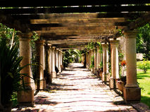 Blom- korridor Arkivbild