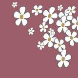 Blom- kort Royaltyfri Foto