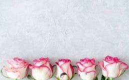 Blom- kort, blom- ram med vita rosor för rosa färger och Arkivfoto