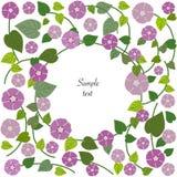 Blom- kort för bakgrundsvektorhälsning Arkivfoton