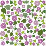 Blom- kort för bakgrundsvektorhälsning Arkivfoto