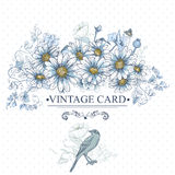 Blom- kort för tappning med fåglar och tusenskönor Royaltyfria Bilder