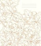 Blom- kort för vektor, retro eksidor och ekollonar. Royaltyfri Foto