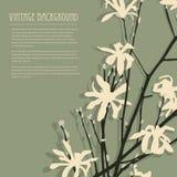 Blom- kort 11 för inbjudan Royaltyfria Bilder