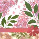 Blom- kort med blommor Arkivfoto